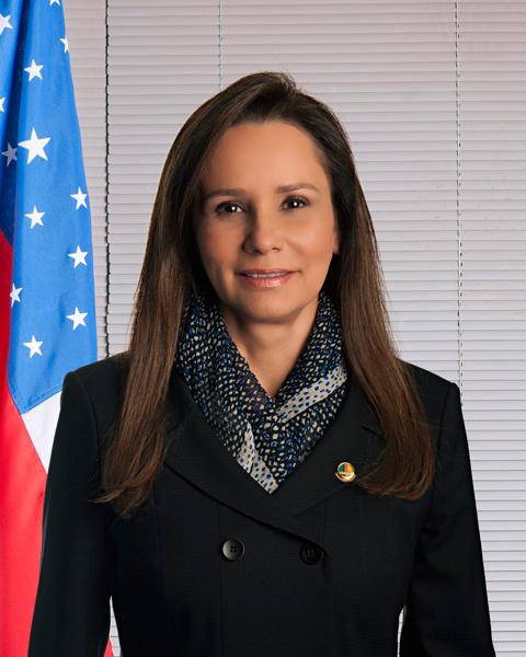 Ir para a página da Sen. Sandra Braga